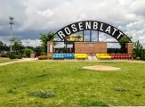 RosenblattInfield
