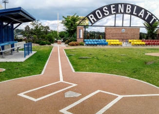 RosenblattInfield1